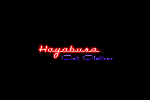 Hayabusa Cat Clother