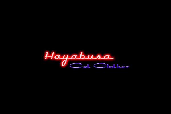 Hayabusa Cat Clother