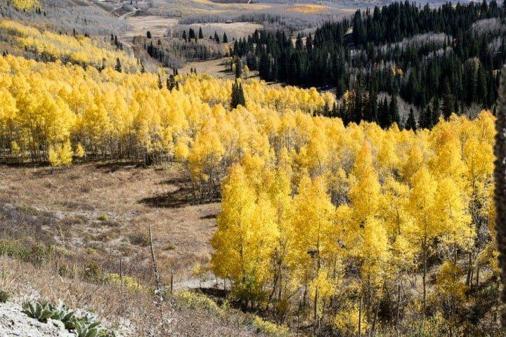 Freenote Utah